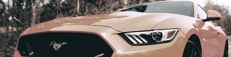 Benchmark Auto Appraisals