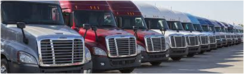 professional truck appraiser