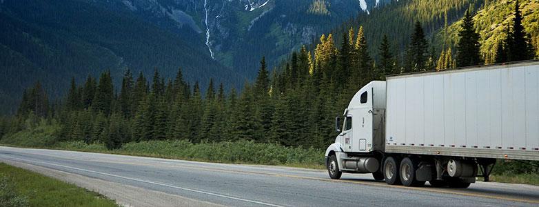 truck appraiser