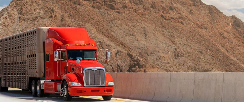 Semi Truck Appraisal